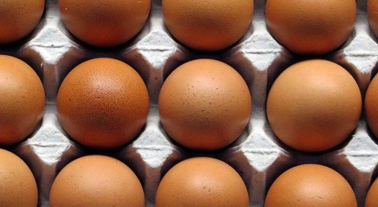 Lahko jajca hraniš na sobni temperaturi ali morajo biti v hladilniku?