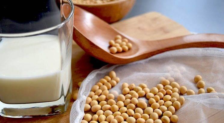 """Je sojino mleko najboljše """"nemlečno"""" mleko na tržišču?"""