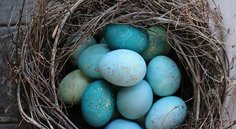 Tiffany velikonočna jajca poškropljena z zlatom