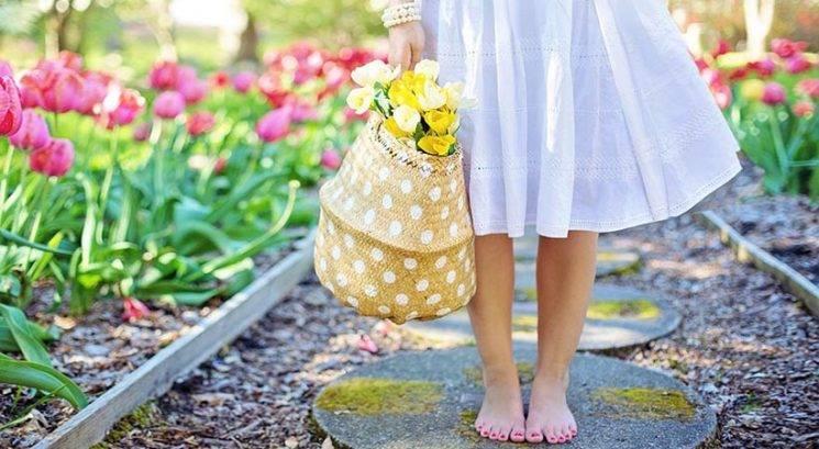 Razlogi, zakaj je pomlad najboljši letni čas