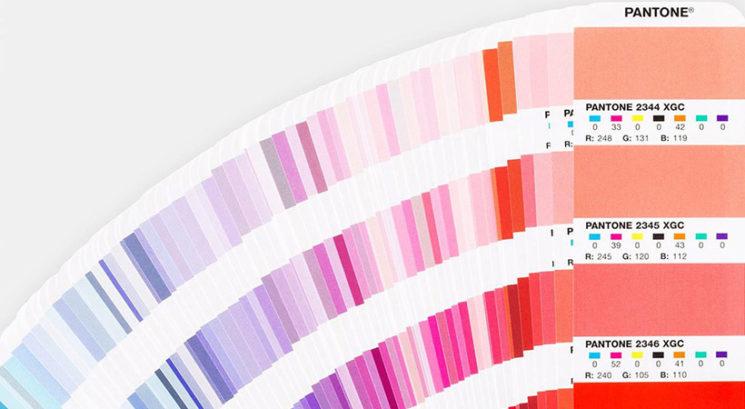 Barvni inštitut Pantone razkril barvo leta za 2019