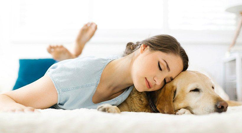 5 razlogov, zakaj je dobro, da tvoj pes spi pri tebi v postelji