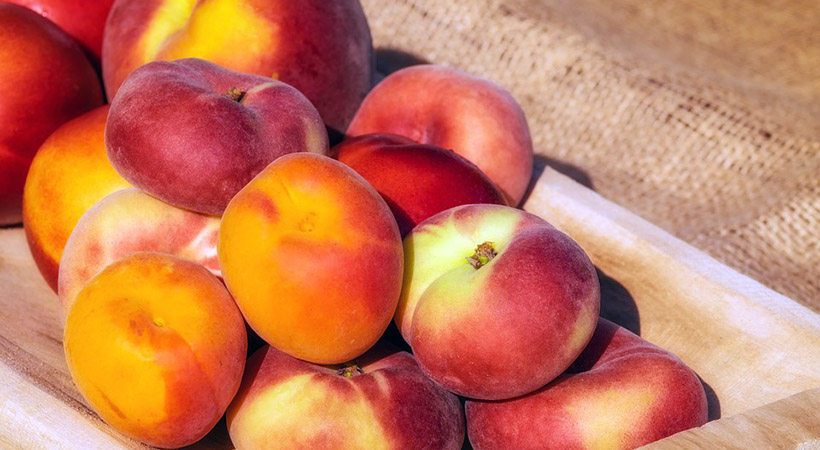 Kako pospešiti zorenje breskev in nektarin