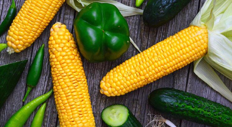 Je koruza sploh zdravo živilo?