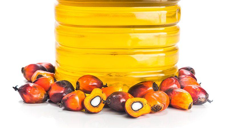 Palmovo olje: Je zdravo ali škodljivo?