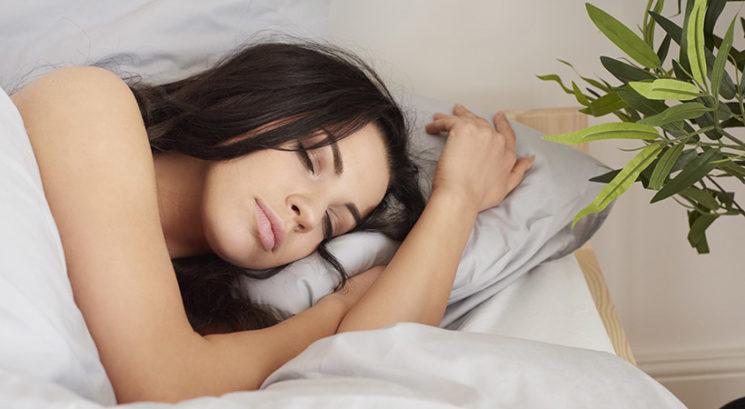 Razrešujemo mite: Ali med spanjem res pogoltnemo pajke?