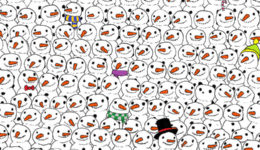 Krajšanje časa: Ali najdeš pando med snežaki?