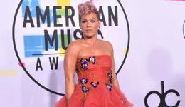Pevka Pink zbolela za koronavirusom