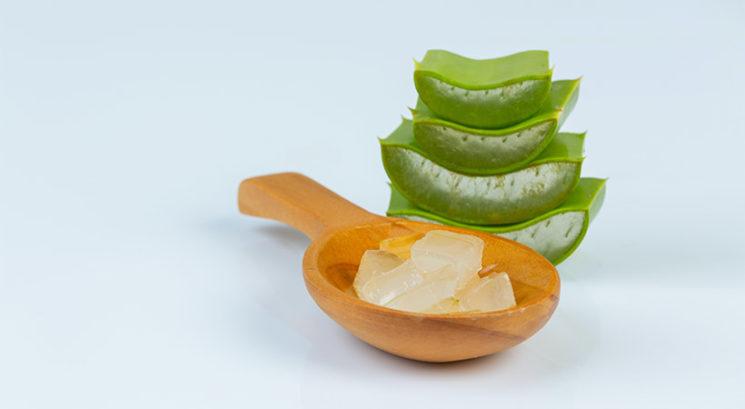 Aloe vera: Briljantni načini uporabe gela (poleg zdravljenja sončnih opeklin)